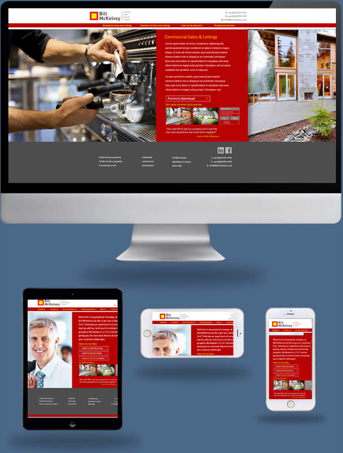 Bill McKelvey Estate Agents - Truska Web Site Design
